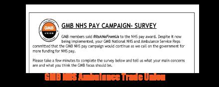 GMB Ambulance trade union survey